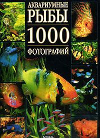 Аквариумные рыбы. 1000 фотографий