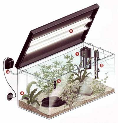 Оборудование аквариума