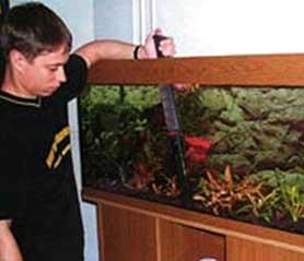 Для того, чтобы одновременно с заменой воды убрать из аквариума ил, накапливающийся на дне, используется сифон