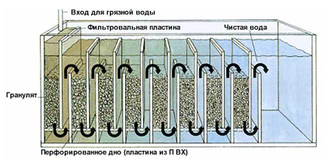 Смена воды в аквариуме