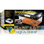 Фаунариум EXOTERRA Breeding Box, 302х196х147 мм