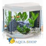 Аквариум AQUATLANTIS CALYPSO белый (025), 40х25х34 см, 27л, LED 19 (leds)+FIL. Mini Biobox2