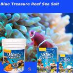 ���� BLUE TREASURE Reef Sea Salt 25 �� �����